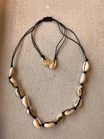 Lobito seashell necklace